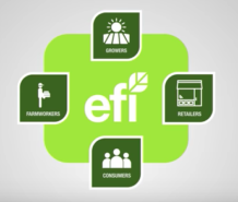 About Equitable Food Initiative in One Minute